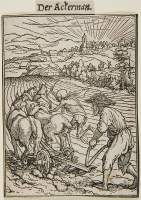 Holbein Proofs 1526: Peasant